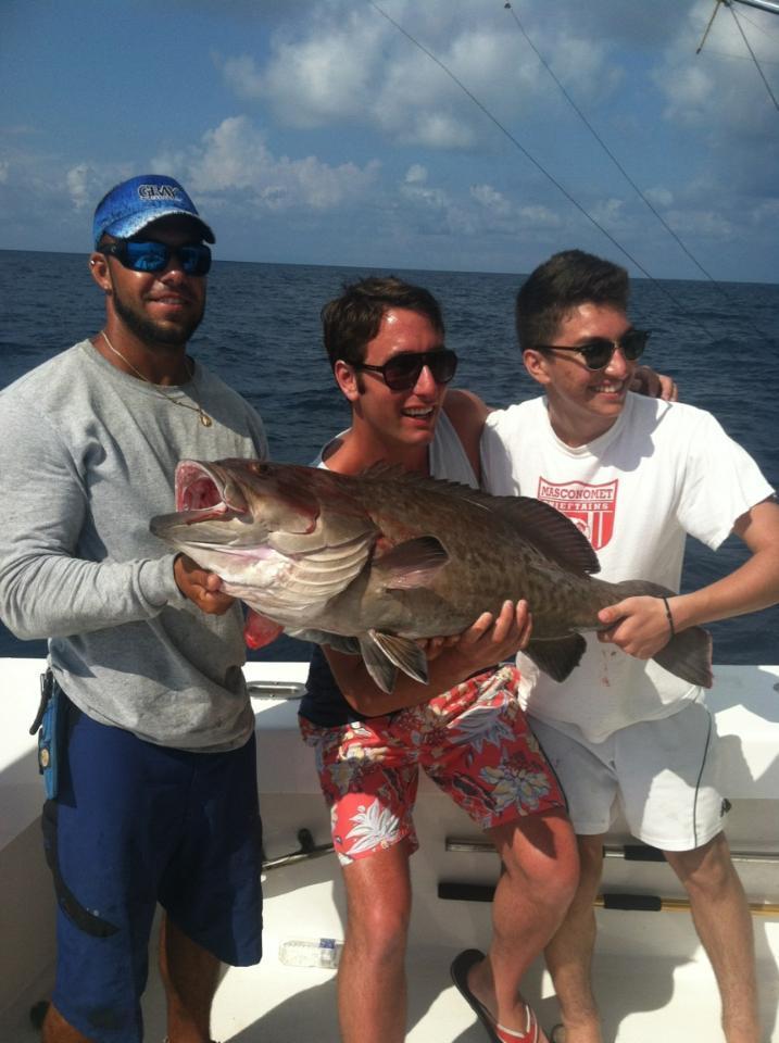 Big gag grouper