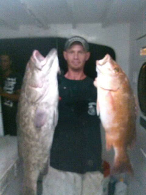 Nice grouper and snapper at night