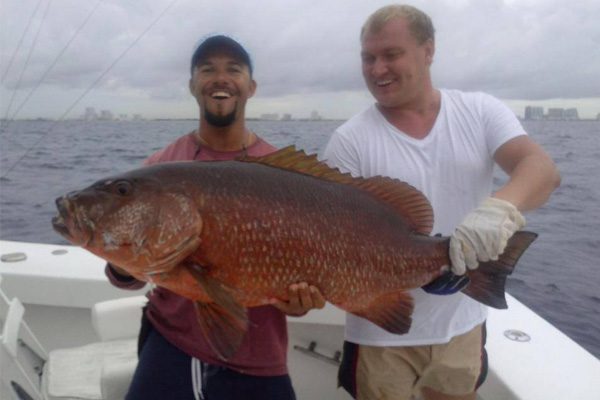 cubera snapper just caught