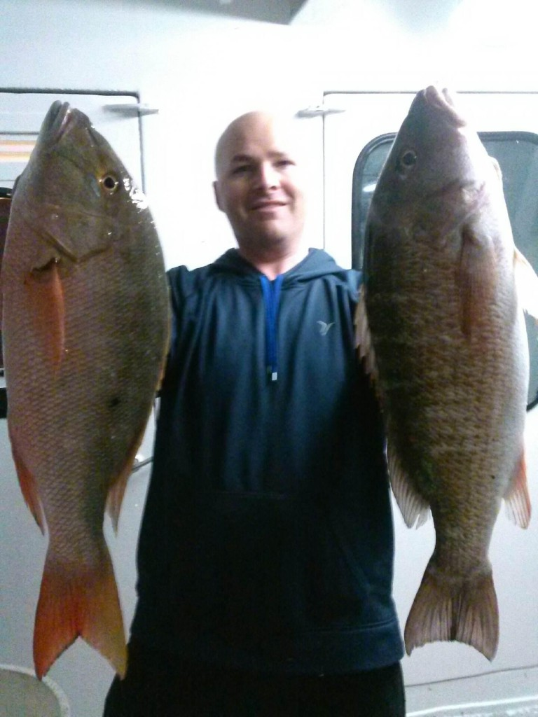 Nice mutton and mangrove snappers