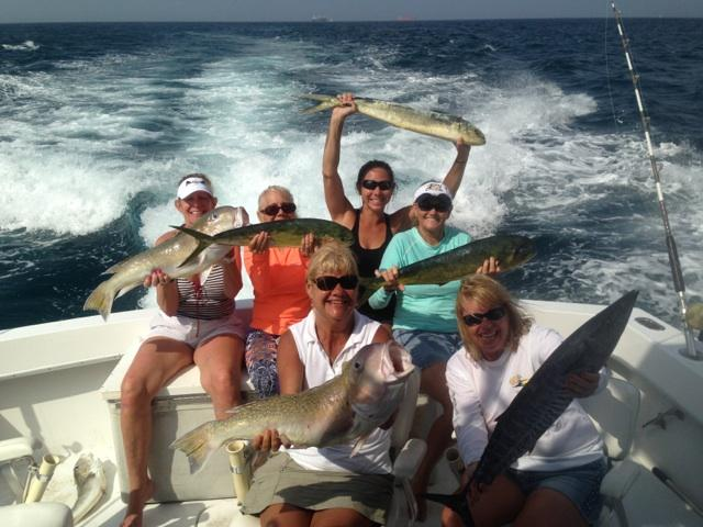 Nice mixed bag of fish caught on our charter