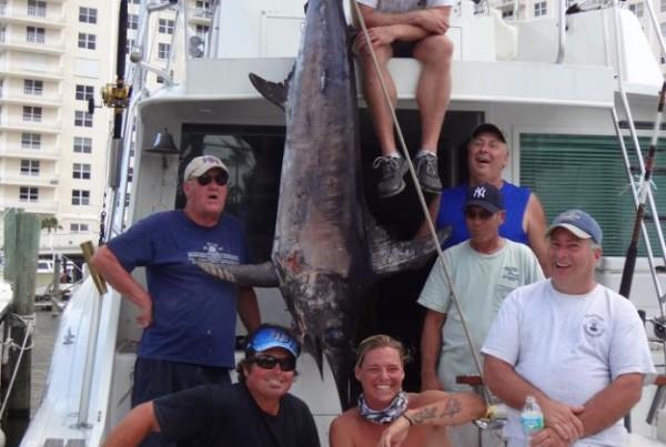 Swordfish Charter