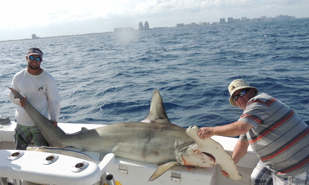 Shark fishing charter