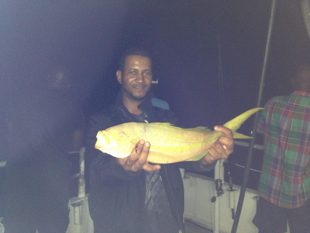 flag yellowtail