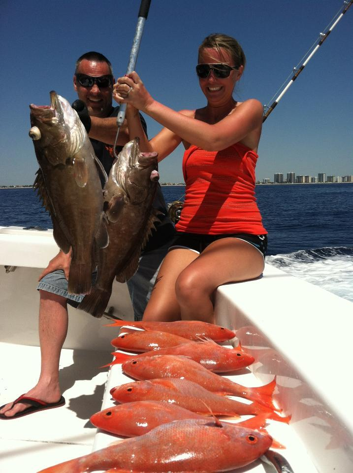 Groupers and snappers