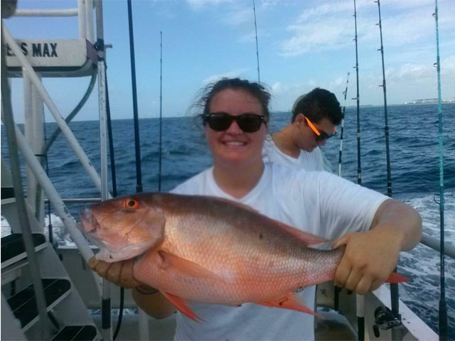 mutton snapper