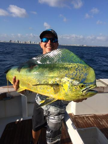Nice dolphin just caught off Fort Lauderdale