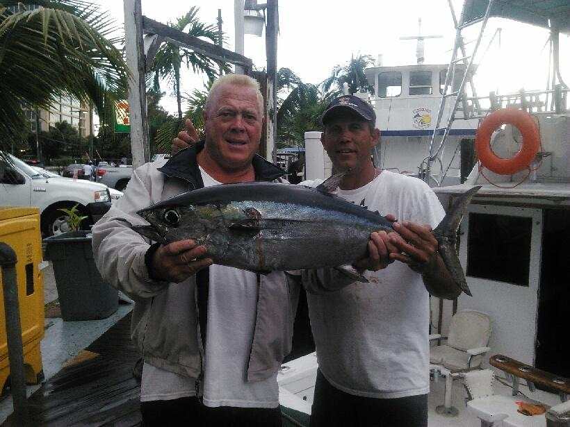 Nice tuna fish caught trolling