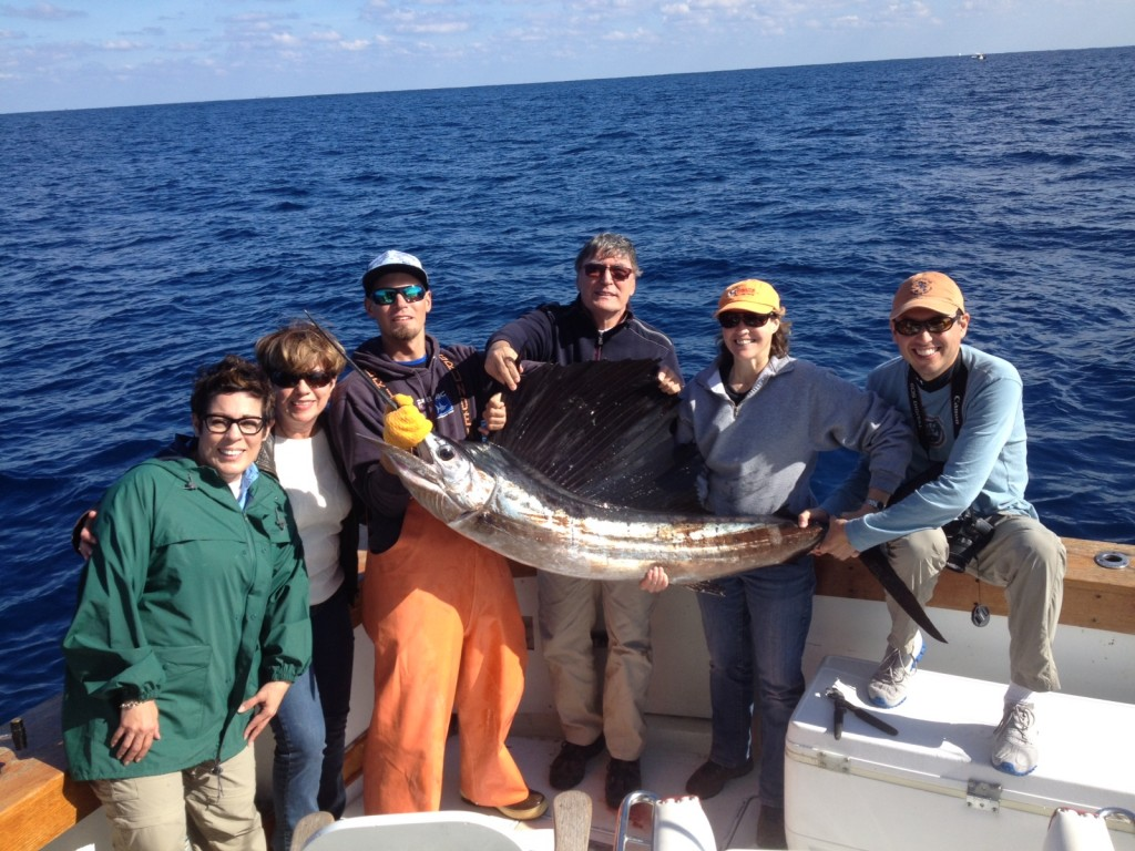 nice sailfish caught and released on our sportfishing charter