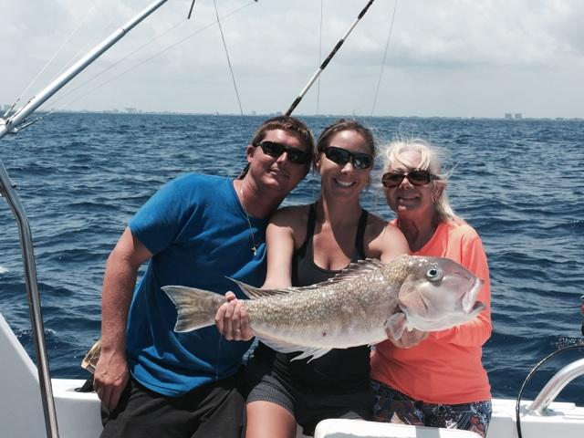Nice tilefish just caught in Ft Lauderdale