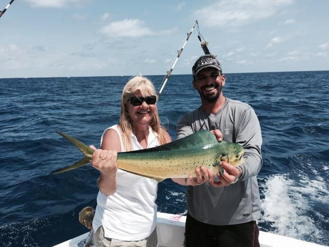Mahi-mahi caught trolling on the reef
