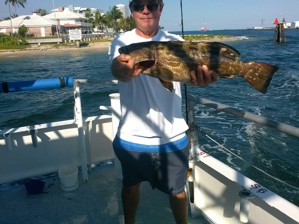 black grouper caught on drift boat