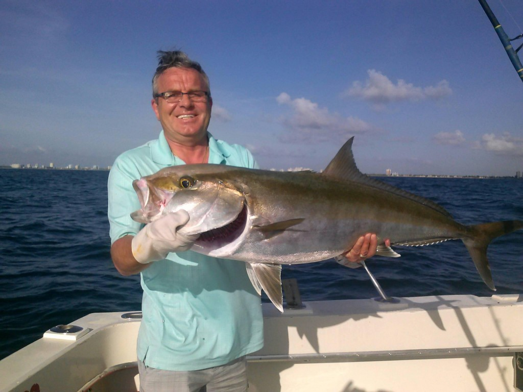 Nice amberjack pulled up from a shipwreck