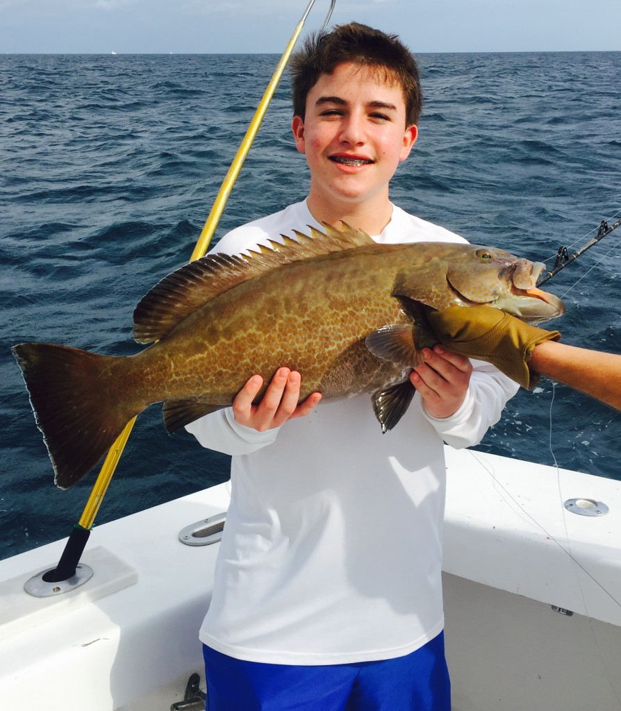 Grouper caught bottom fishing