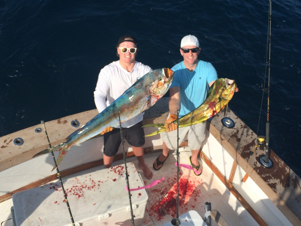 A pair of bloody mahi-mahi dolphin just boated.
