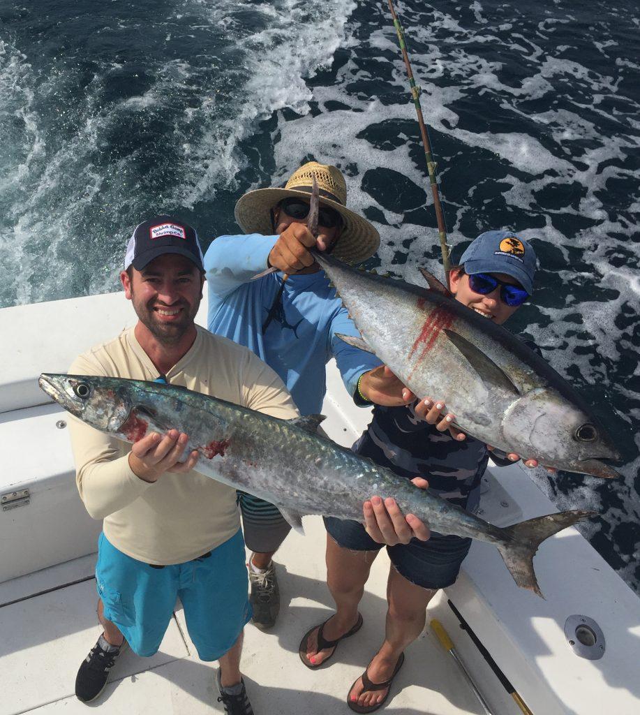 Nice tuna and kingfish just caught