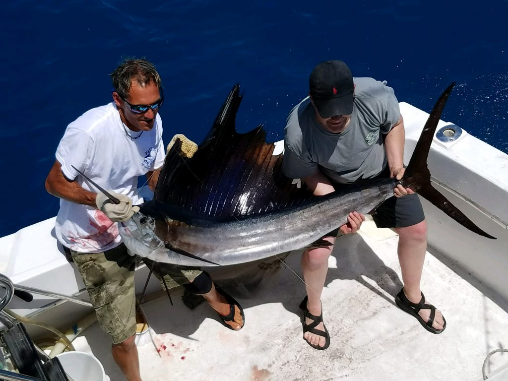 2 guys holding up a nice sailfish just caught with its sail erect